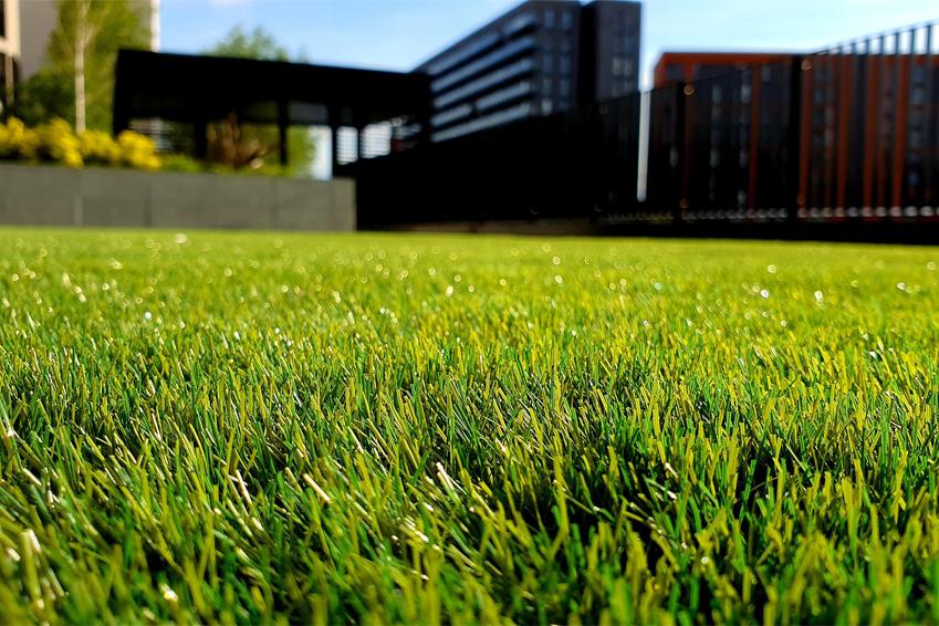 Rasensaat oder Rollrasen: sattes Grün vor einer Hausfassade